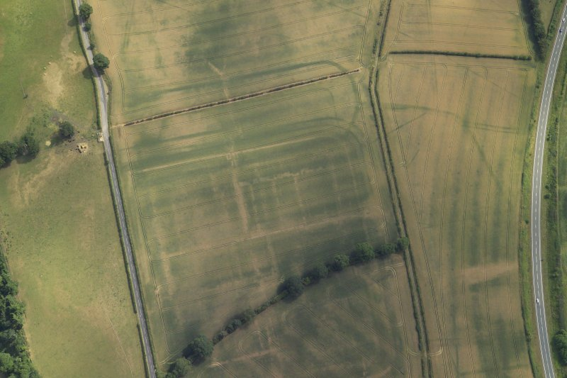 Oblique aerial view centred on the cropmarks of the Roman fort and the fort annexes, taken from the WNW.