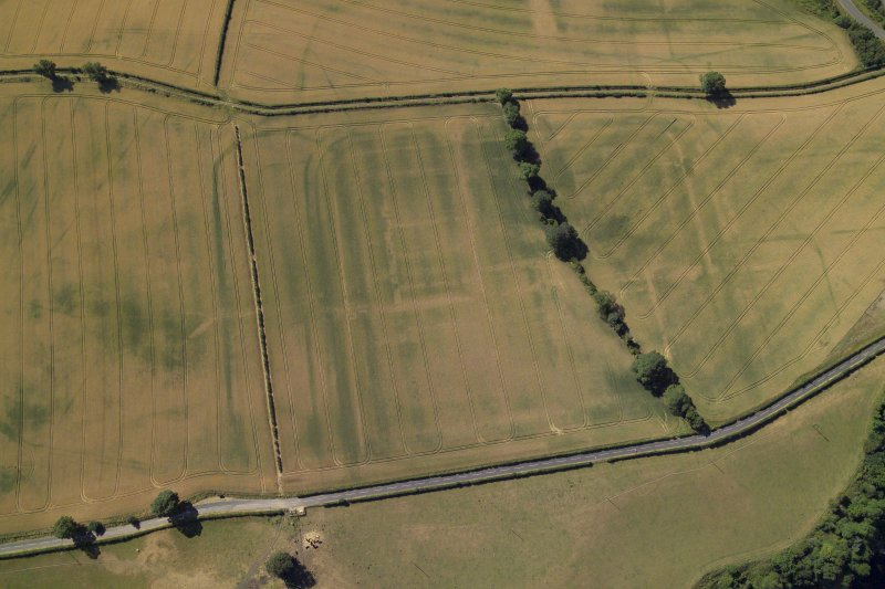 Oblique aerial view centred on the cropmarks of the Roman fort and fort annexes, taken from the N.