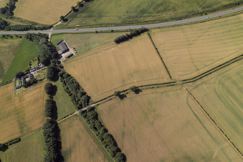 Oblique aerial view centred on the cropmarks of the Roman temporary camps and fort annexe, taken from the NE.