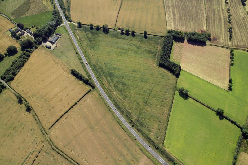 Oblique aerial view centred on the cropmarks of the Roman temporary camps and possible fort annexe, taken from the NW.