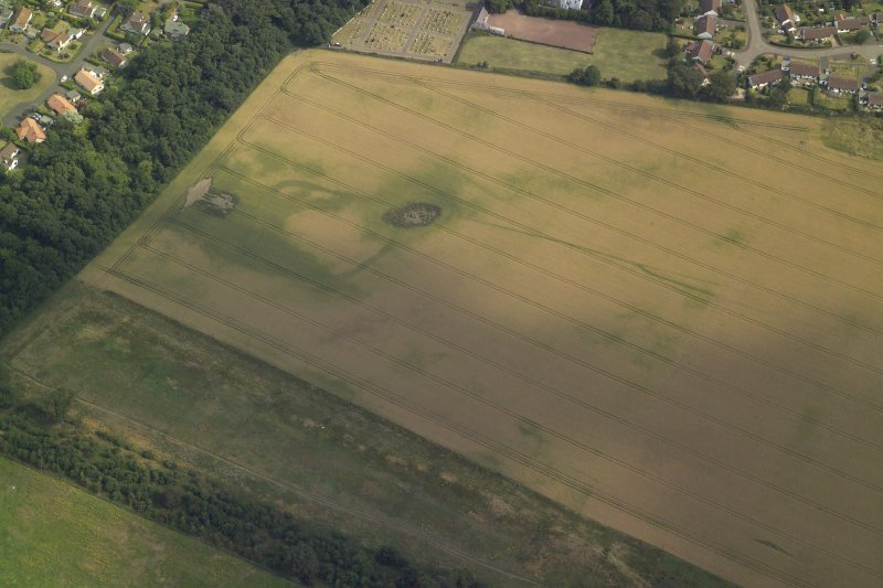 Oblique aerial view centred on the cropmarks of the settlement and the cursus, taken from the NW.