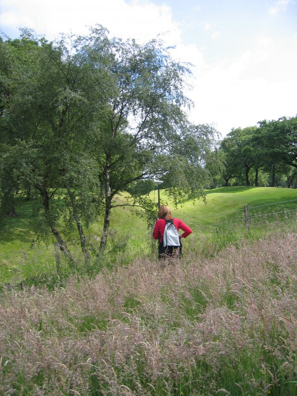 Commission at work. Ms G Brown surveying at Seabegs Wood on the Antonine Wall.