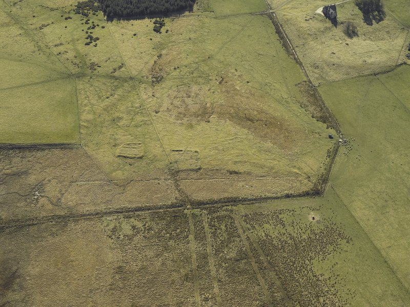 Oblique aerial view centred on the remains of the buildings and enclosures, taken from the NW.