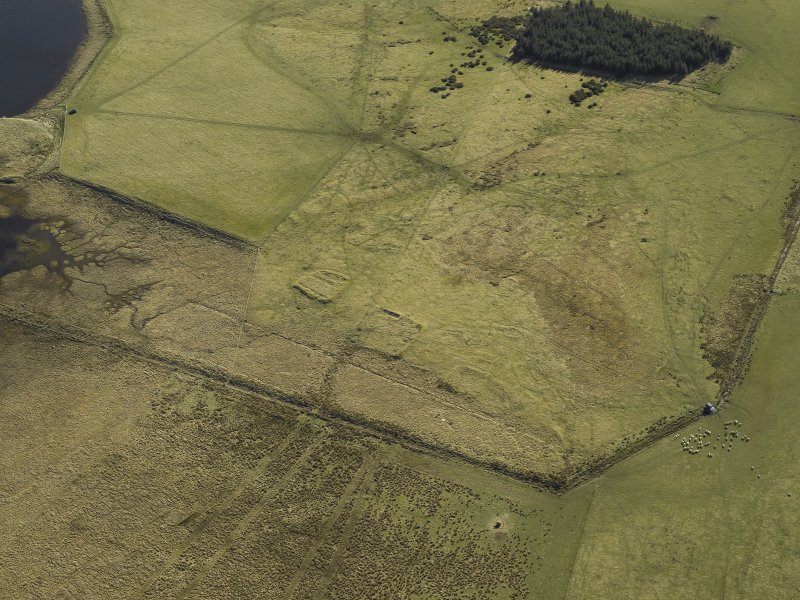 Oblique aerial view centred on the remains of the buildings and enclosures, taken from the WNW.