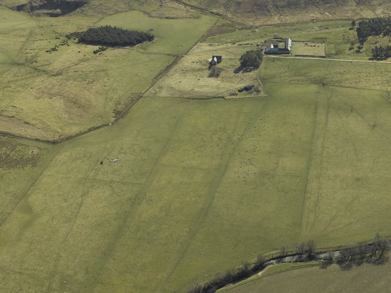 Oblique aerial view centred on the remains of the township centred on a parallel row of grazing sheep, taken from the WNW.