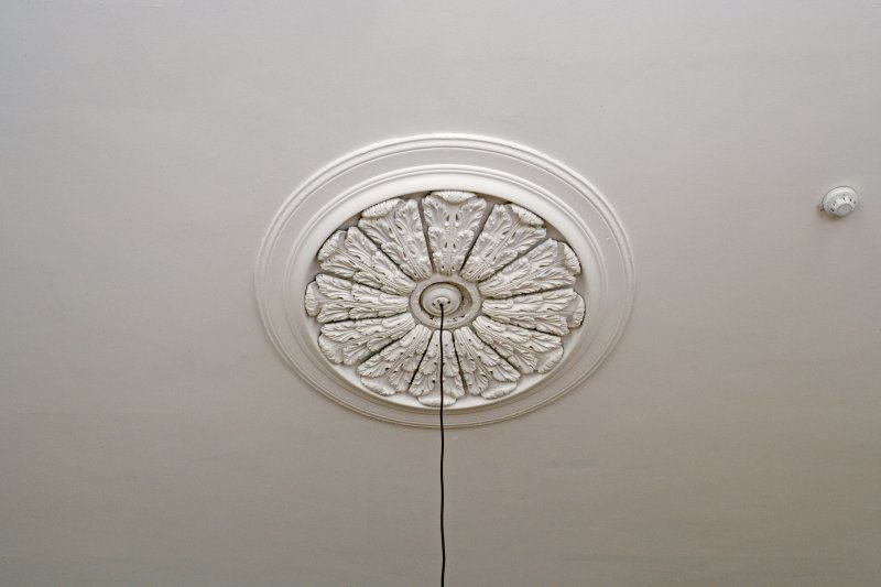 Interior. 1st floor. Library. Ceiling rose.