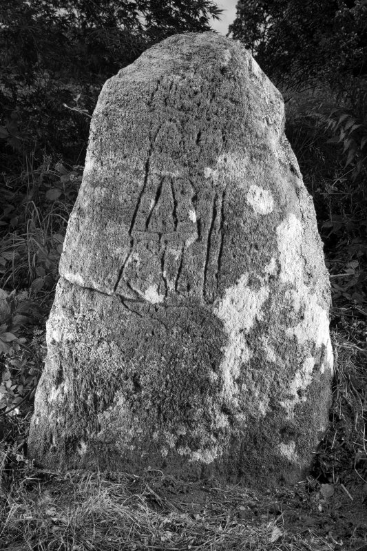 View of stone showing carved pictish figure (B&W)