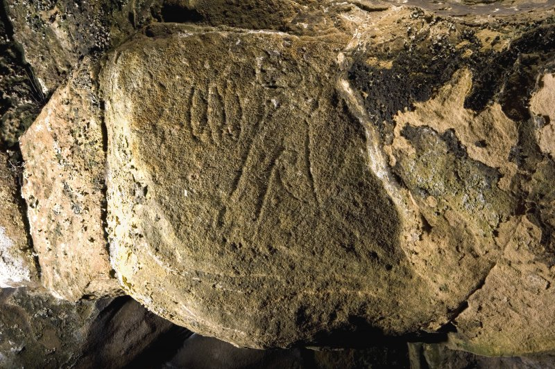 Detail of triple-oval and flower Pictish symbols on ceiling of entrance to Sculptor's Cave, Covesea