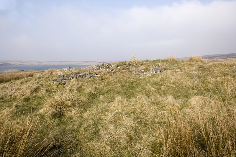 View of the chambered cairn from the SW.