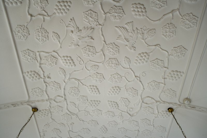 Interior. First floor. South west room. Detail of ceiling.