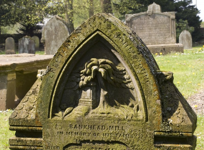 Detail of gravestone showing Tree of Life
