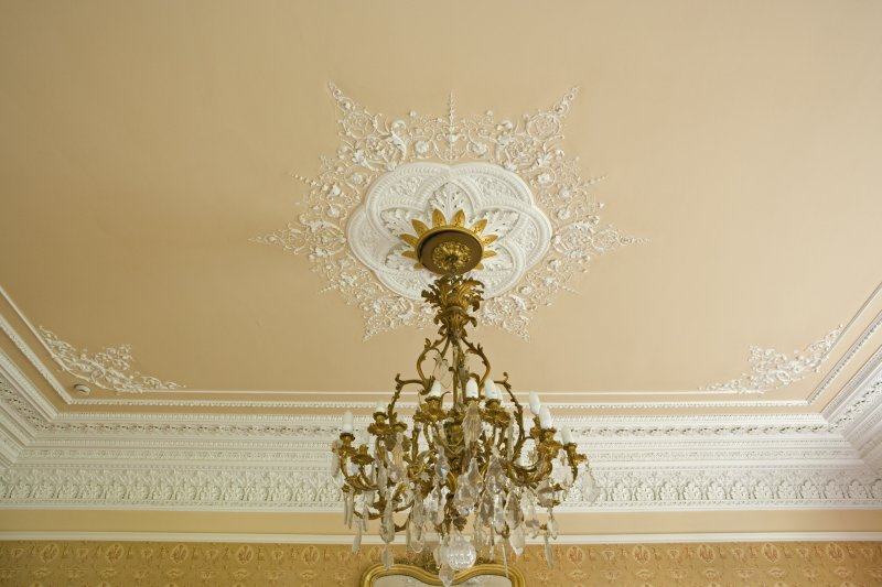 Interior. Ground floor. Drawing room. Plasterwork and light fitting. Detail