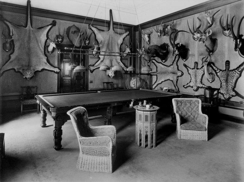 View of billiard room showing animals skins and antlered heads on walls in Montgreenan House, Ayrshire.