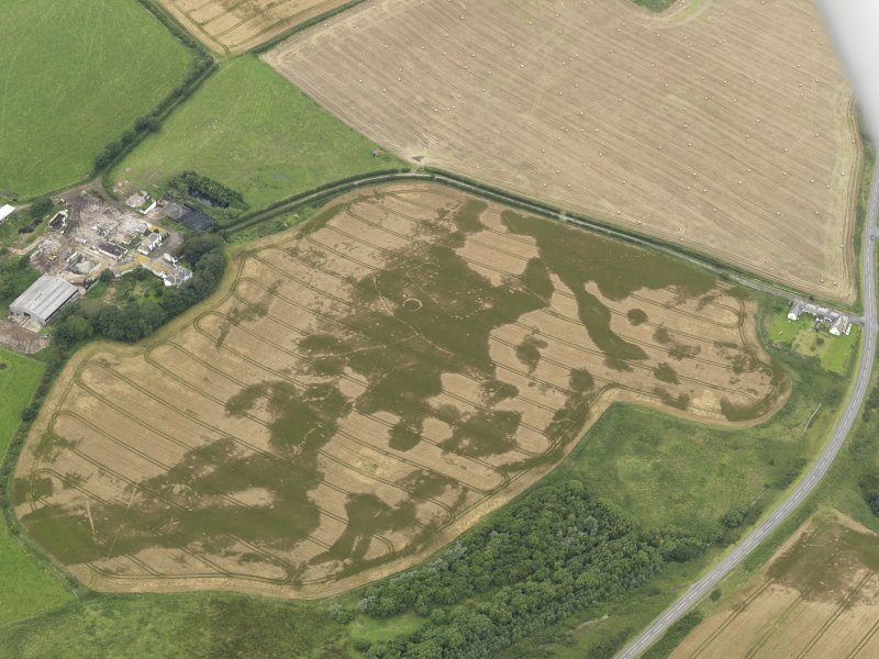 Oblique aerial view of the cropmarks of the pit defined avenue and cursus and the barrow at Kirkmabreck, taken from the SE.