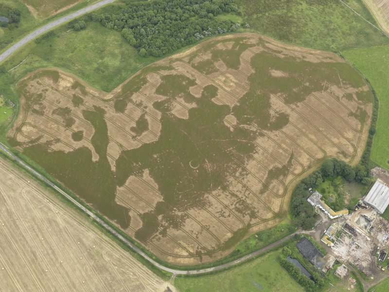 Oblique aerial view of the cropmarks of the pit defined avenue and cursus and the barrow at Kirkmabreck, taken from the W.