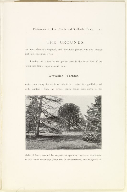 Page 11 of Estate Exchange, no. 1480 Sales Brochure. Inscribed: ''The Grounds are most effectively disposed, and beautifully planted with fine Timber and rare Specimen Trees...''