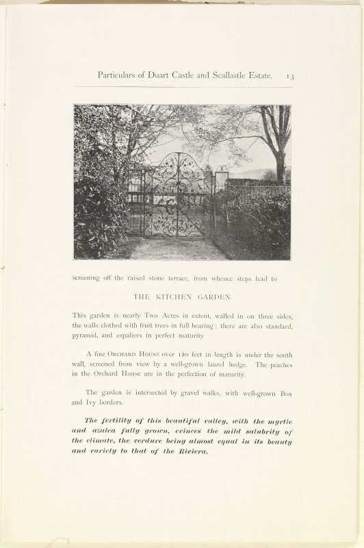 Page 13 View of screening off the raised stone terrace of Estate Exchange, no. 1480 Sales Brochure. Inscribed: ''screening off the raised stone terrace, from whence steps lead to The Kitchen Garden. This garden is nearly Two acres in extent, walled in on three sides, the walls clothed with fruit trees in full bearing; there are also standard, pyramid, and espaliers in perfect maturity... The fertility of this beautiful valley, with the myrtle and azalea fully grown, evinces the mild salubrity of the climate, the verdure being almost equal in its beauty and variety to that of the Riviera.''