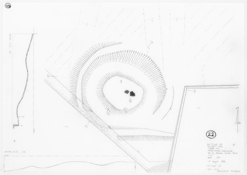 Plan and section of stone circle and ring-ditch