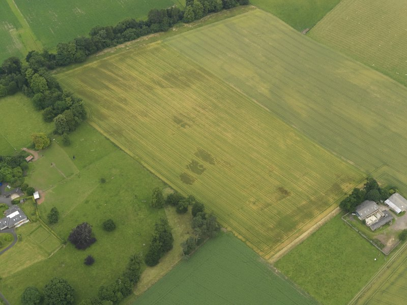 Oblique aerial view of the cropmarks of the ring ditch, legionary fortress and rig and furrow at Carpow, taken from the S.