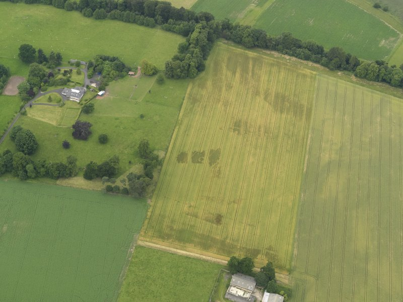 Oblique aerial view of the cropmarks of the ring ditch, legionary fortress and rig and furrow at Carpow with the Carpow House adjacent, taken from the SSE.