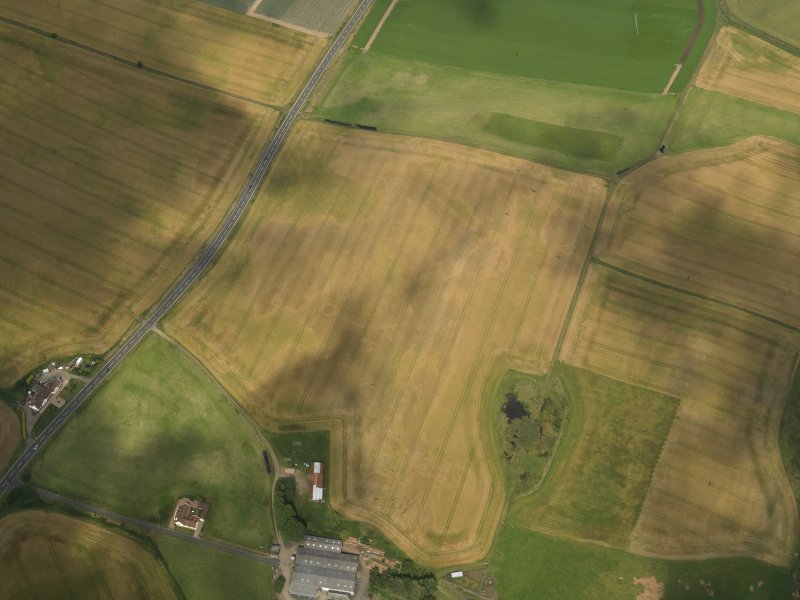 Oblique aerial view of the cropmarks of the barrow, ring ditches and pits at Easter Kinnear, taken from the SW.
