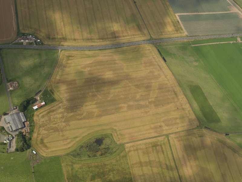 Oblique aerial view of the cropmarks of the barrow, ring ditches and pits at Easter Kinnear, taken from the SSE.