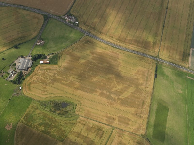 Oblique aerial view of the cropmarks of the barrow, ring ditches and pits at Easter Kinnear with the farmsteading adjacent, taken from the SE.