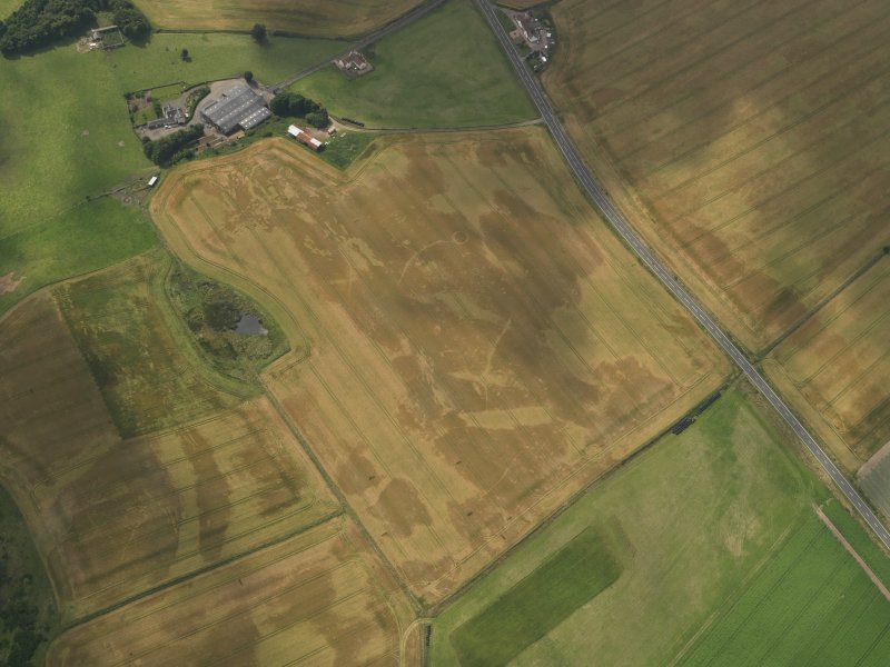 Oblique aerial view of the cropmarks of the barrow, ring ditches and pits at Easter Kinnear with the farmsteading adjacent, taken from the E.