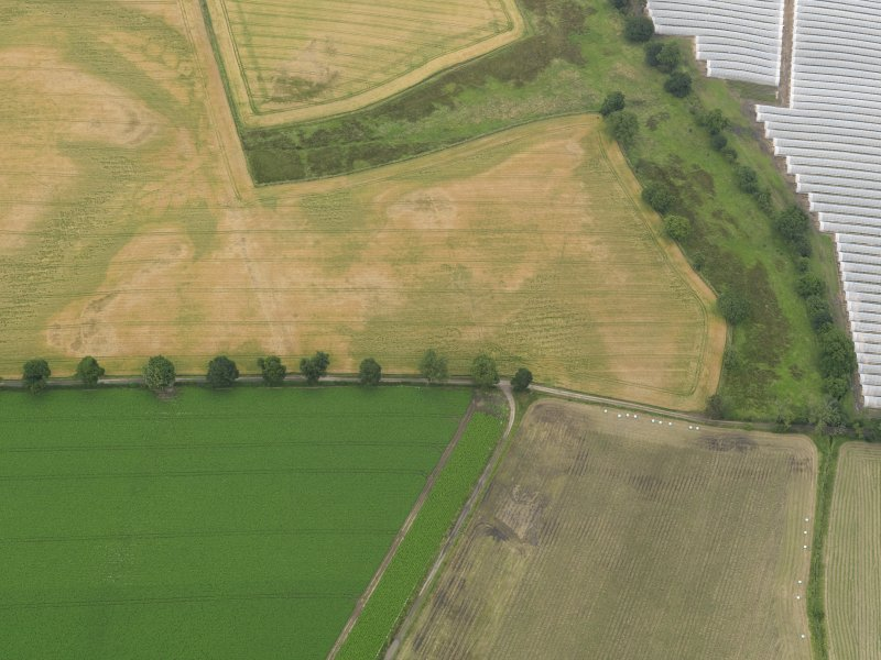 Oblique aerial view centred on the cropmarks of the souterrains, taken from the SW.