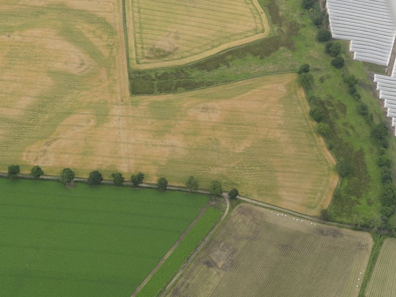 Oblique aerial view centred on the cropmarks of the souterrains, taken from the SSW.