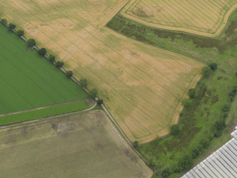 Oblique aerial view centred on the cropmarks of the souterrains, taken from the SSE.