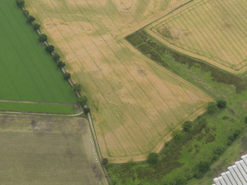 Oblique aerial view centred on the cropmarks of the souterrains, taken from the SE.