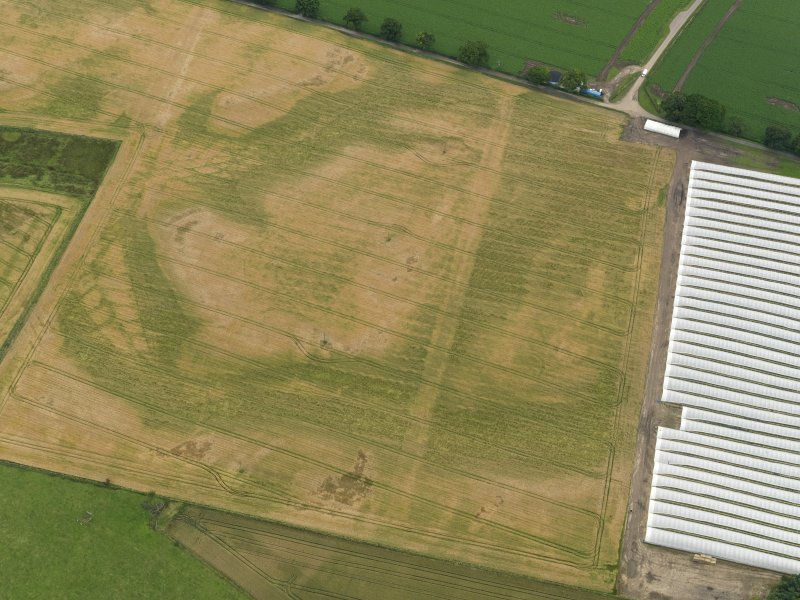 Oblique aerial view centred on the cropmarks of the rig, taken from the NNE.