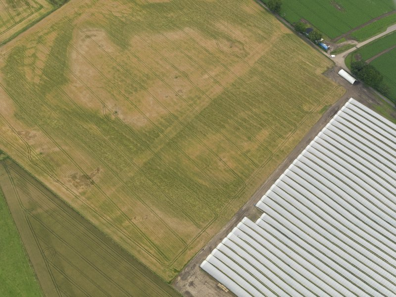 Oblique aerial view centred on the cropmarks of the rig, taken from the NNW.