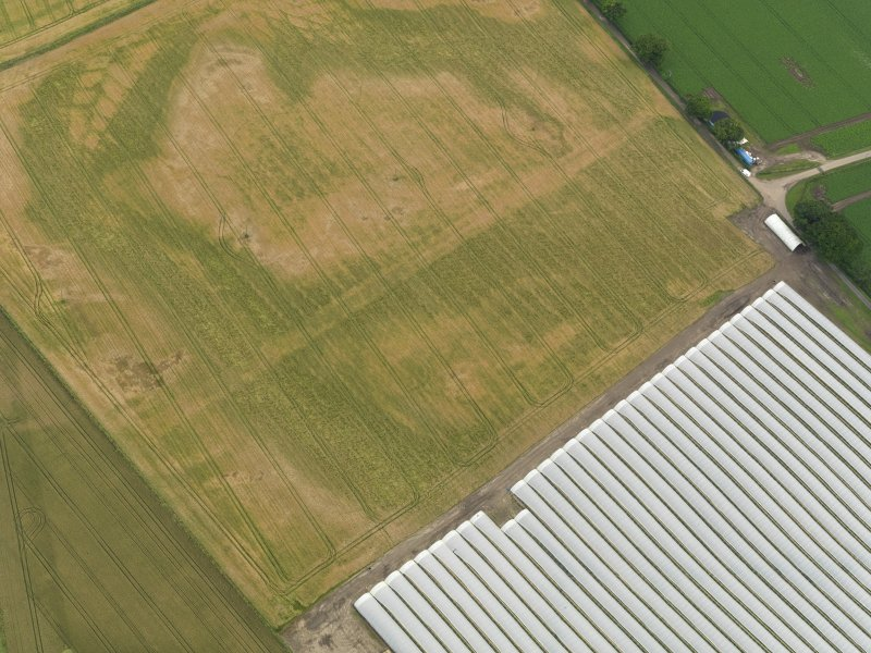 Oblique aerial view centred on the cropmarks of the rig, taken from the NW.