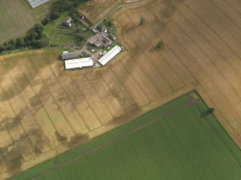 Oblique aerial view centred on the cropmarks of the pits, henge, ring ditch and rig, taken from the N.