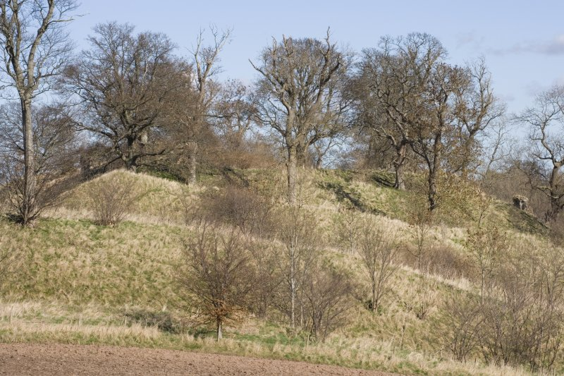 View of castle mounds from W
