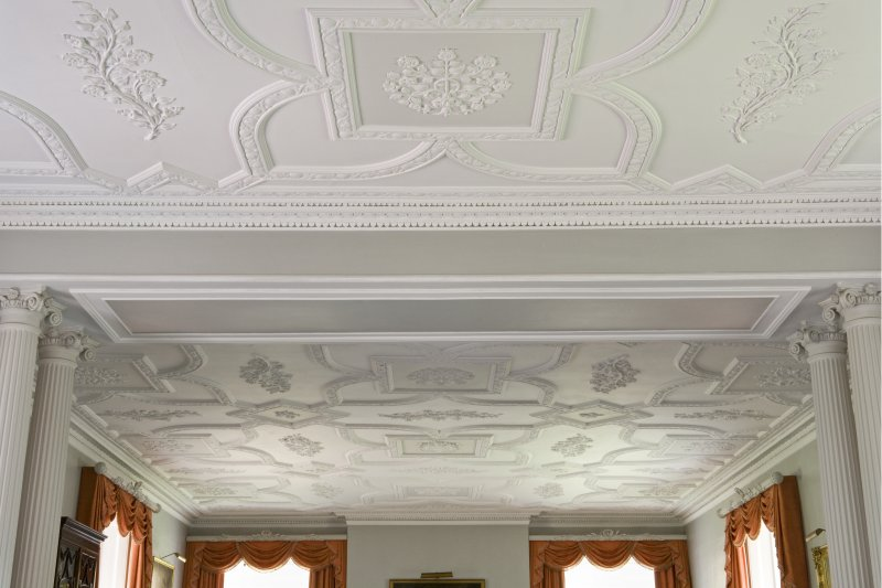 Interior. 1st floor. Drawing room. Plaster ceiling. Detail