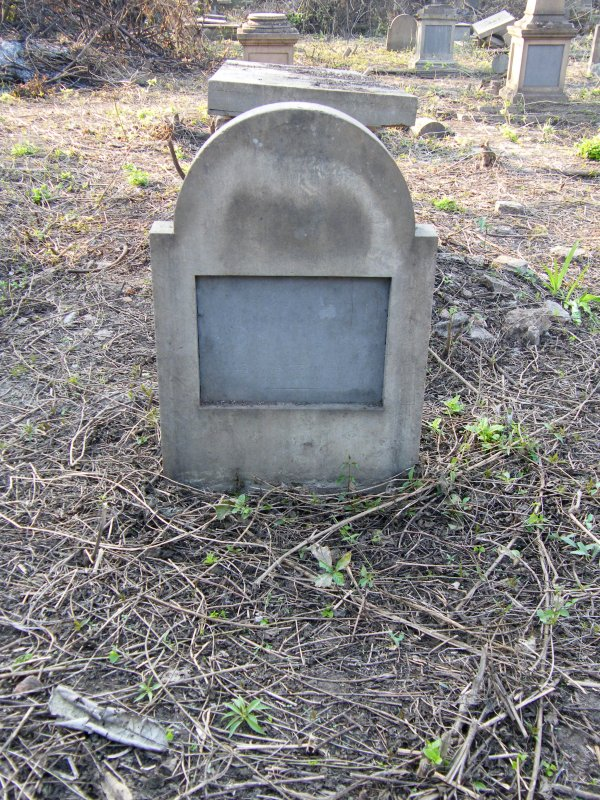 Plot no. 619. Headstone.
