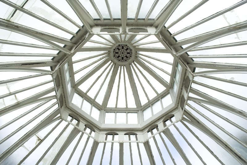 Interior. Ground floor, conservatory, detail of roof
