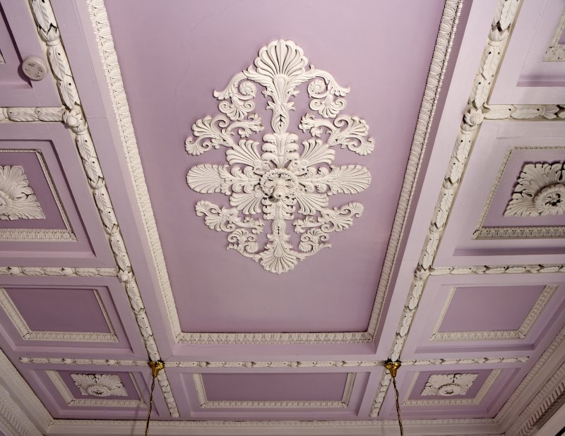 Interior. Detail of drawing room ceiling