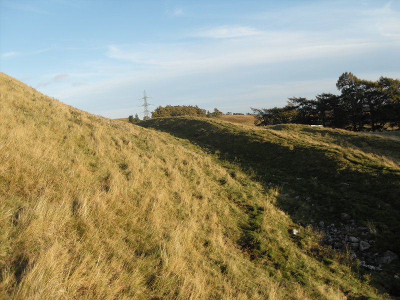 General view from the W of the ramparts and ditches lying immediately S of the timber-laced fort.