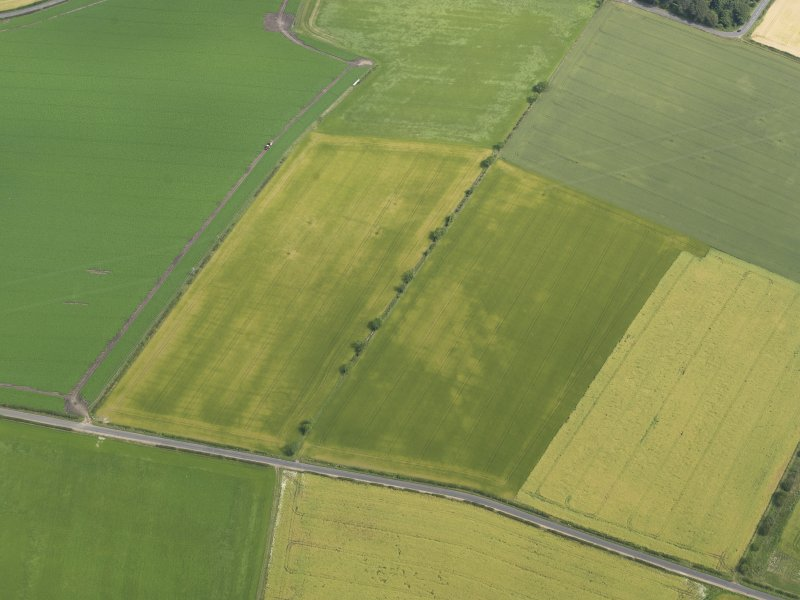 Oblique aerial view of the cropmarks of the round house, taken from the SW.