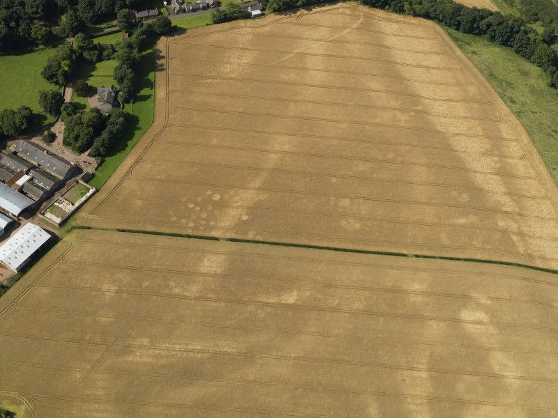 Oblique aerial view of the cropmarks of the pits, barrow, enclosure and field drain, with the barrow and track beyond, taken from the E.