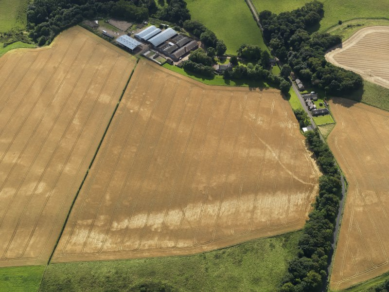 Oblique aerial view of the cropmarks of the pits, barrows, enclosure, track and field drain, taken from the NNW.