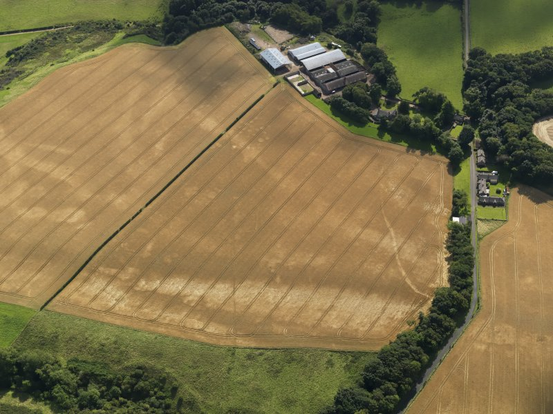 Oblique aerial view of the cropmarks of the pits, barrows, enclosure, track and field drain, taken from the N.