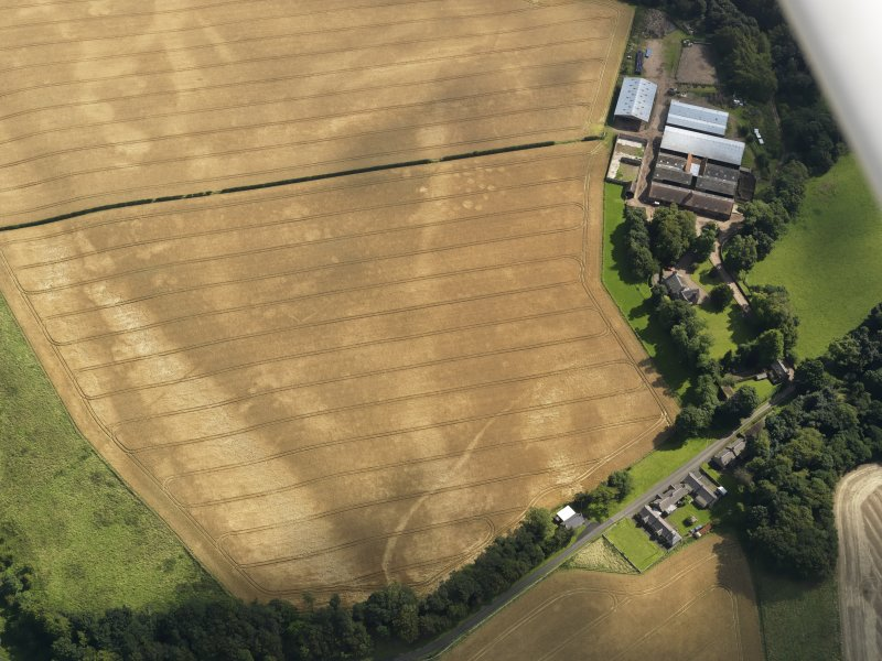 Oblique aerial view of the cropmarks of the pits, barrows, enclosure, track and field drain, taken from the W.