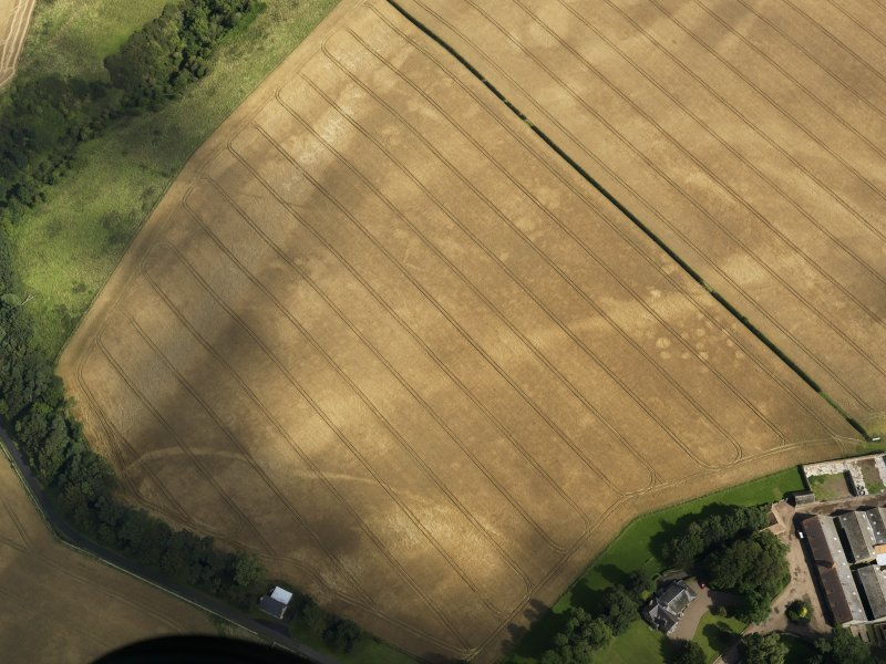 Oblique aerial view of the cropmarks of the pits, barrows, enclosure, track and field drain, taken from the SW.