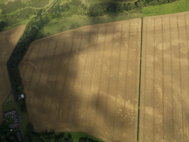 Oblique aerial view of the cropmarks of the pits, barrows, enclosure, track and field drain, taken from the S.