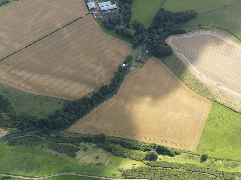 Oblique aerial view of the cropmarks of the field boundaries and pits, with the barrows, enclosure, track and field drain adjacent, taken from the NW.